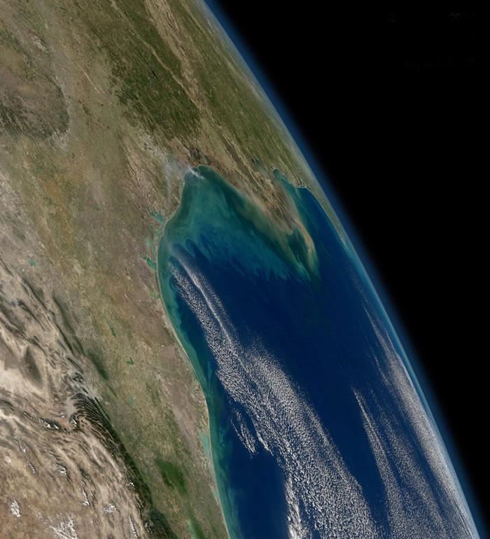 北美洲页岩气的形成与恐龙时代白垩纪火山灰有关?