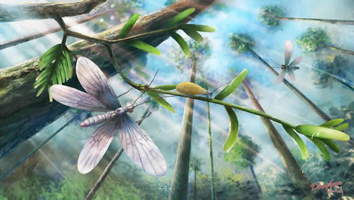 白垩纪蛾类生态复原图