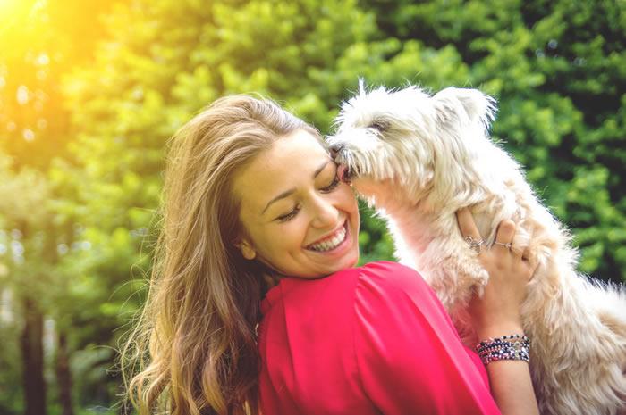 《微生物组》:狗和人类肠道菌群的基因、饮食反应比我们之前认为的更加相似