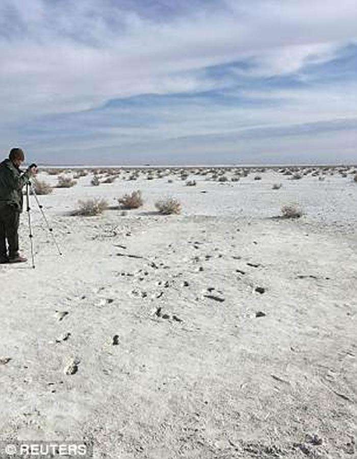 除了追踪树懒的人类踪迹之外,还有更多的人类踪迹。如图所示,在新墨西哥州白沙国家纪念碑可以看到两个远古人类的足迹化石。