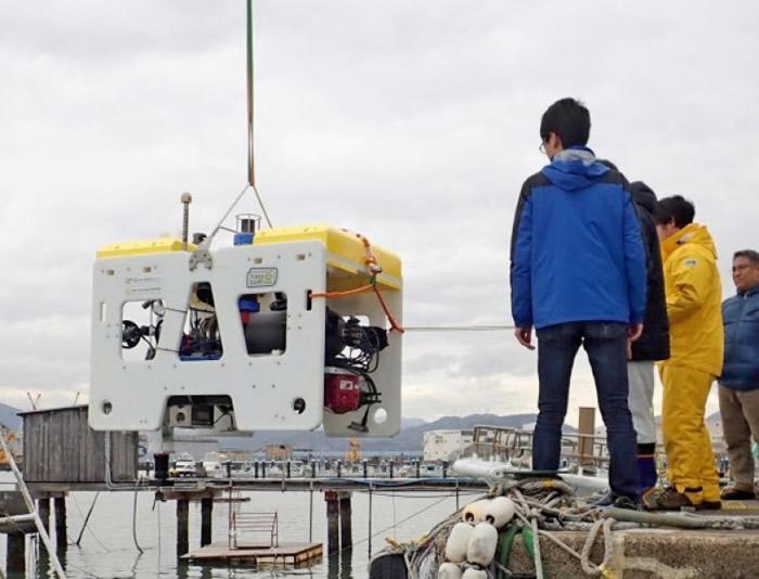研究团队早前在静冈县骏河湾测试新机械人。