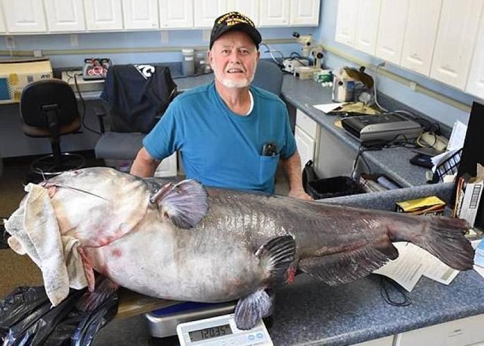 美国佛罗里达州男子用非传统方法钓到超大鲶鱼 不获FWC承认为新纪录
