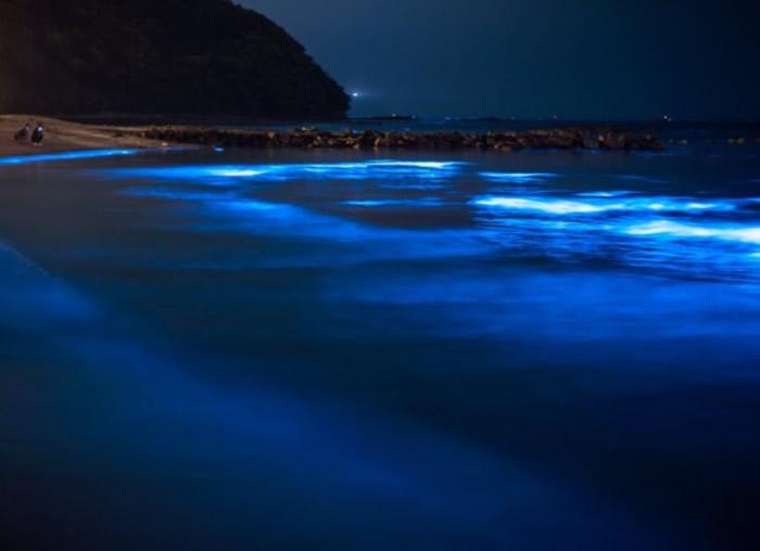 鸟取县岩美町海边出现动人的蓝光。
