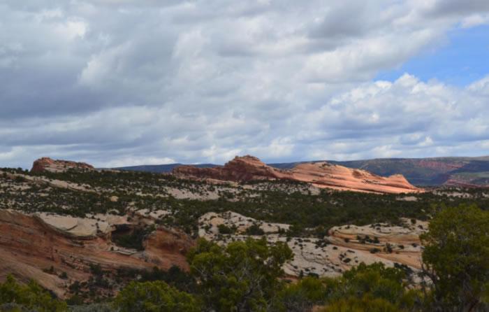 无知游客破坏美国犹他州公园2亿年前恐龙化石