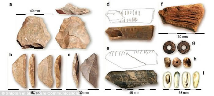 德国科学家发掘78000年前肯尼亚Panga ya Saidi洞穴古人类遗址