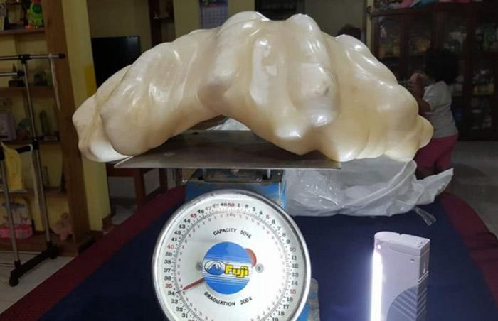 菲律宾渔夫捕获大蚌壳内发现34公斤超级大珍珠 价值1亿美元