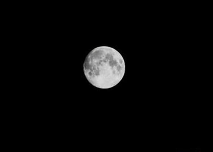 光明区的市民称,月亮虽然又大又圆,却未见彩虹。