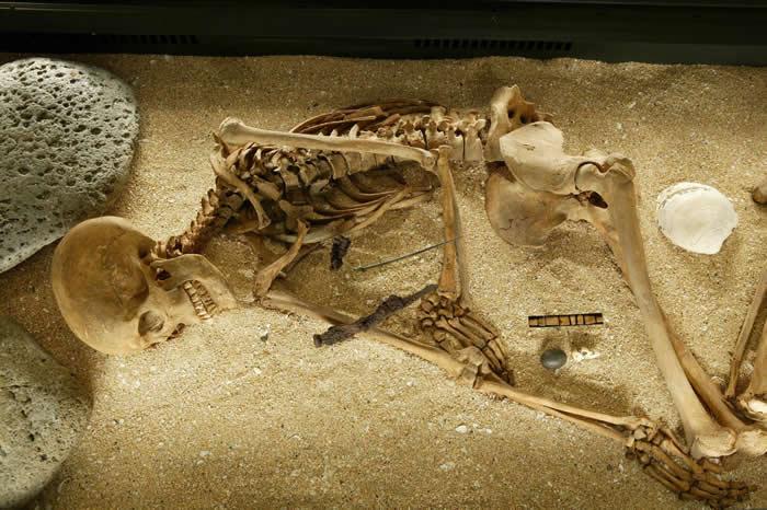 基督教之前(<1000 C.E.)某古代冰岛女性的骨骸。