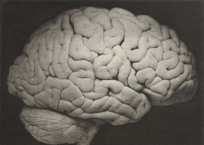 通过更多研究,或可有助对抗认知障碍症。