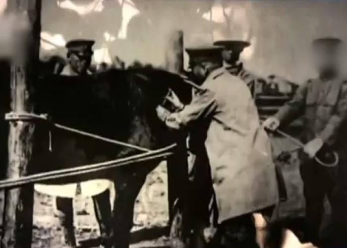 """""""100部队""""的前身是1931年11月成立的""""关东军临时病马收容所""""。"""