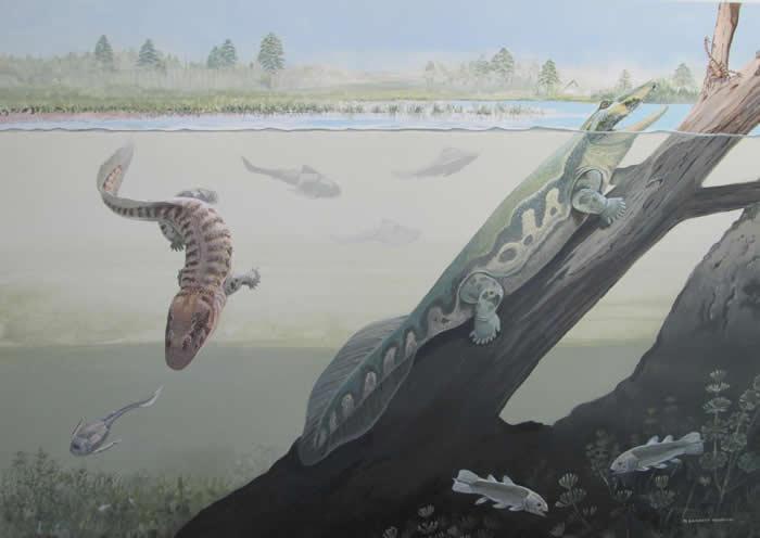 显示Tutusius(右侧)和Umzantsia(左侧)的Waterloo Farm化石沉积层的艺术重构。