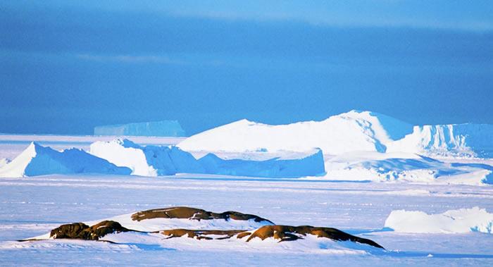 欧洲航天局:南极洲在2012年至2017年间损失了超过一万亿吨冰