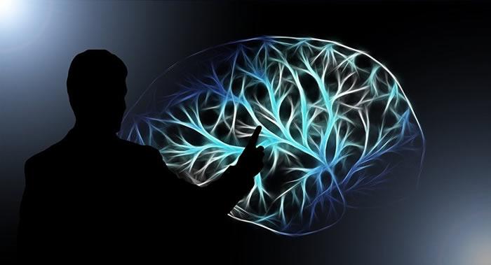 《神经元》杂志:阿尔茨海默氏病与脑组织中有疱疹病毒有关系