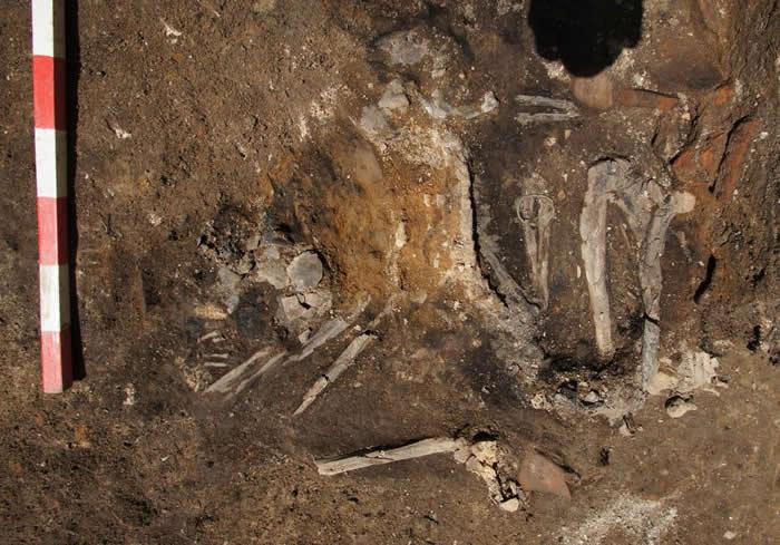 学者在公元251年的古地层中发现一名成年女性的骨骸。它手上依然戴着一只青铜手镯。 PHOTOGRAPH COURTESY ELENA BOZHINOVA, PL