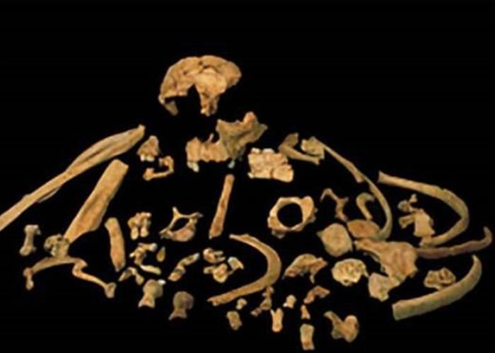 考古学家于西班牙北部发现前人骸骨。