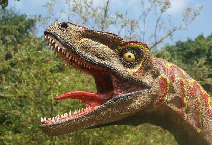 人们一向以为暴龙张开血盆大口,就能把猎物咬个粉身碎骨。