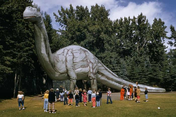 像霸王龙、雷龙和剑龙这样的恐龙,主宰地球超过1亿5000万年,而人类出现,也不过几十万年而已。 PHOTOGRAPH BY J. BAYLOR ROBERTS,