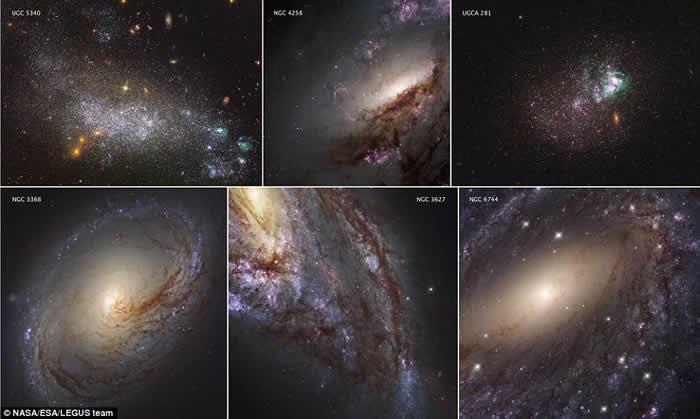 6幅图像展示出该星团附近不同恒星形成的过程。