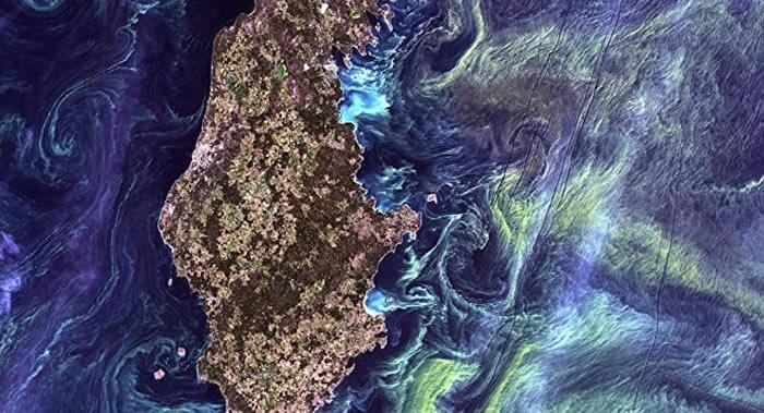 Biogeoscience期刊:科学家预言波罗的海将遭遇生态灾难
