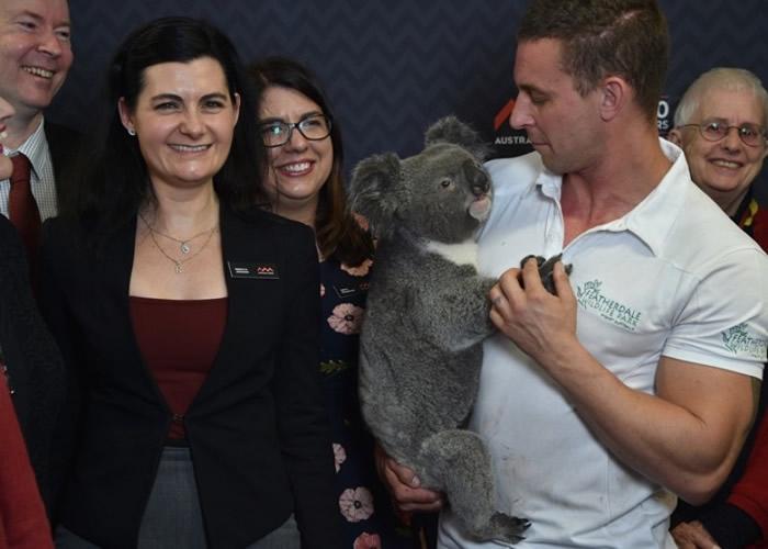 科学家在发表研究结果会上抱着树熊。