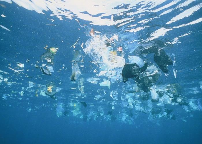 塑胶废料已成为海洋的主要污染物之一。