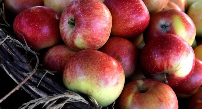 俄罗斯营养师:水果最好在上午吃 晚上不要吃苹果
