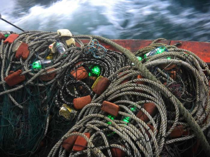在秘鲁外海进行的研究共用了114张渔网,渔网上每隔10公尺就有一盏LED灯。 PHOTOGRAPH BY PRODELPHINUS