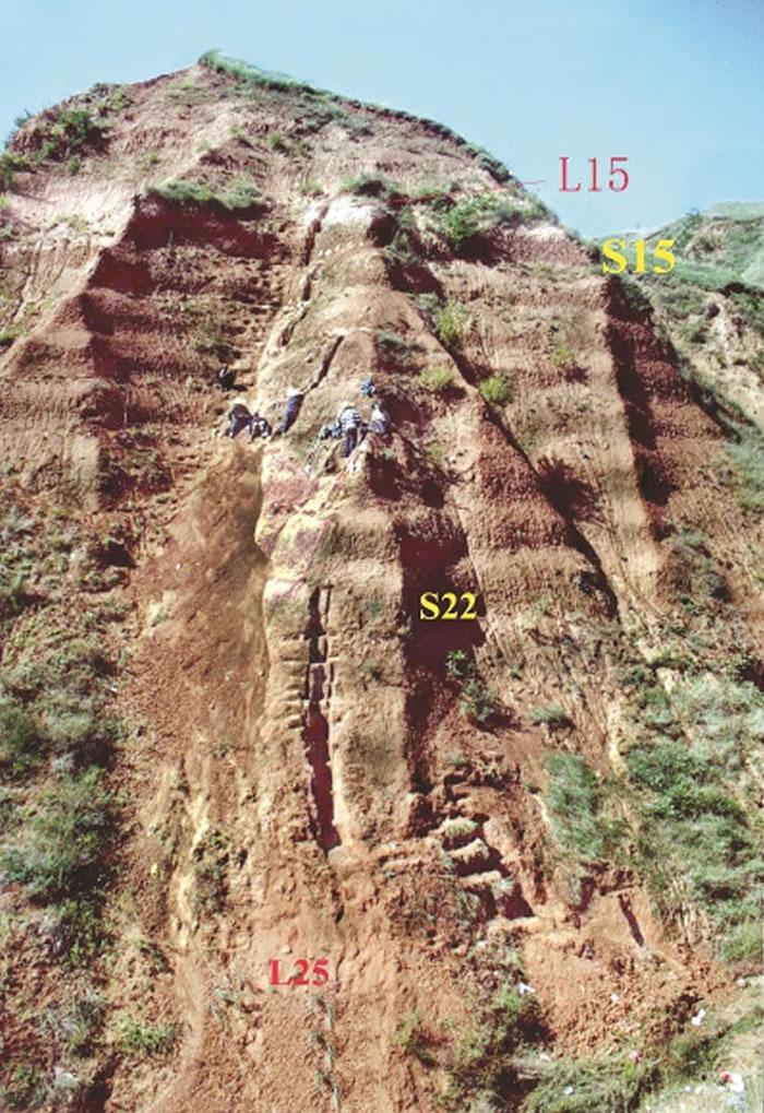 科研人员在蓝田上陈遗址主剖面陡峻采样