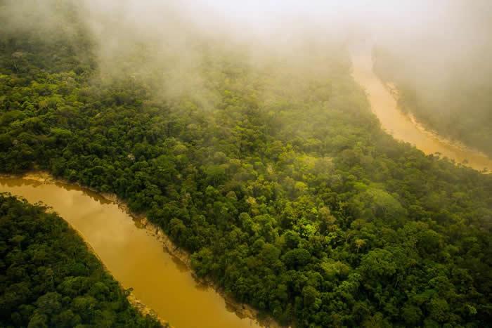 亚马逊雨林(见图)远比我们想像的更复杂,新书《河的第三岸》的作者说道。 PHOTOGRAPH BY REDMOND DURRELL, ALAMY STOCK P