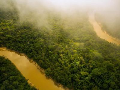 《河的第三岸》:惊人旅程揭开亚马逊的黑暗面