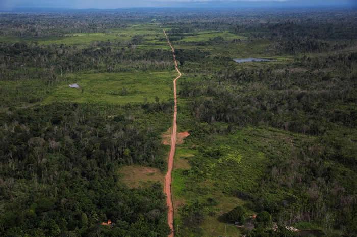 盗伐会造成像这样失去森林的地区,这是从直升机上看到的景象。除了盗伐以外,亚马逊地区还面对了其他许多挑战,从贪腐到贩毒都有。 PHOTOGRAPH BY LALO