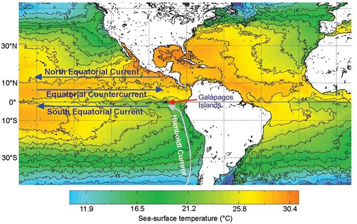 现代海洋表层水温度图