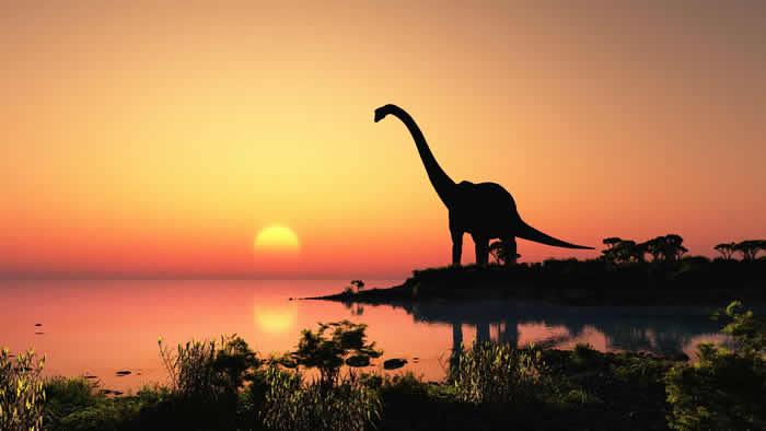 6500万年前大型小行星撞击地球灭绝恐龙还使气候升温10万年