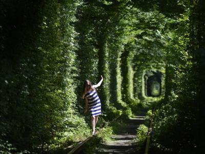"""乌克兰隐世小镇铁路美景 茂林长廊如浪漫""""爱情隧道"""""""