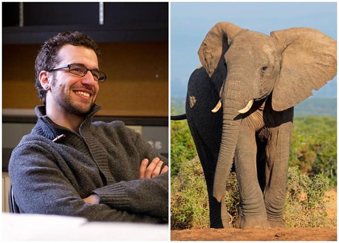 林奇(左图)等人的研究,揭示大象不易患癌的真正原因。