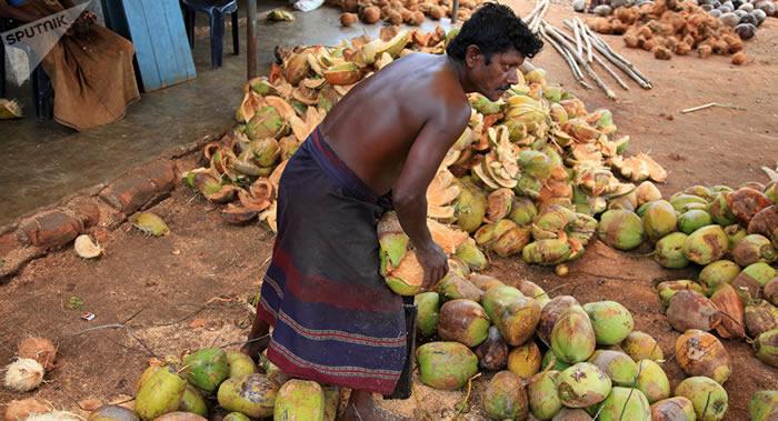 科学家指出最有害的食品:椰子油