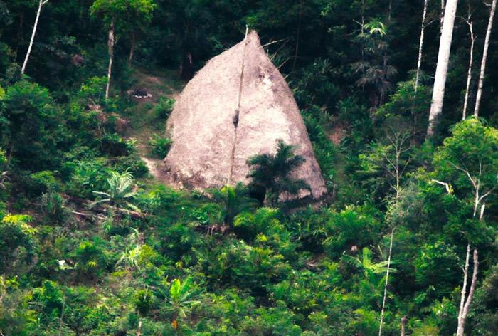 土著以树木搭建的简陋房屋。