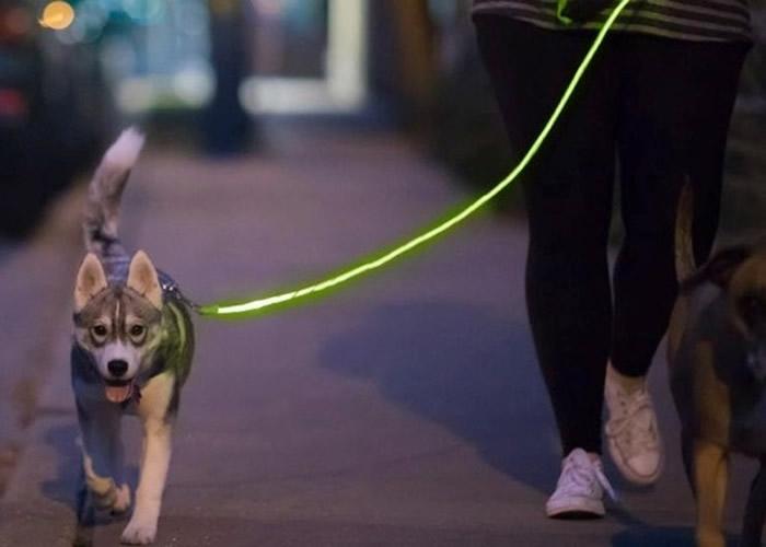 该款光纤狗带标榜安全型格,也是全球唯一整条都闪着LED灯的狗带。