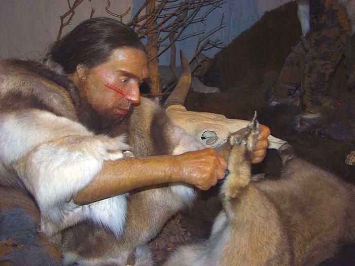 《美国科学院院报》:气候变冷可能是导致尼安德特人灭绝的重要原因