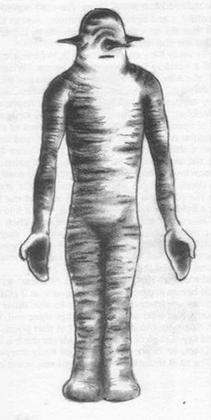 帕克与希克森1973年遇到的外星人有着胡萝卜外型的鼻子,手则长得像蟹爪。