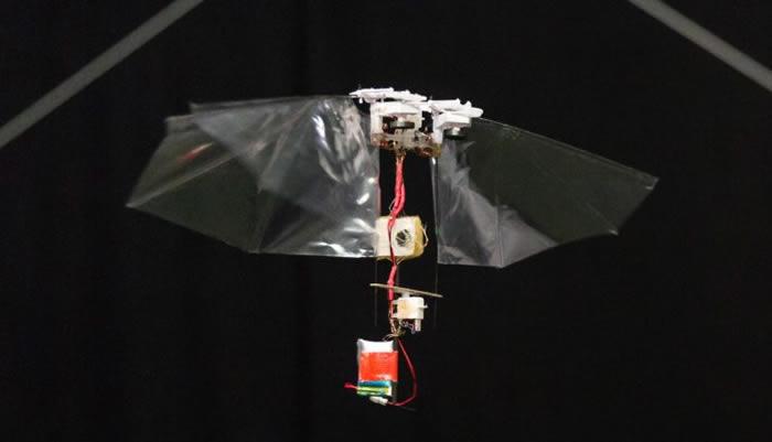 灵巧扑翼飞行机器人可模仿昆虫的特技飞行表演