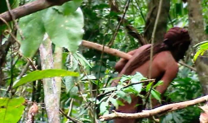 巴西朗多尼亚州(Rondônia)塔纳鲁原住民保留地(Tanaru Indigenous Land)内「孤独幸存者」稍纵即逝的身影。 COURTES