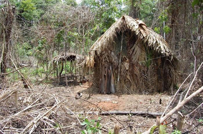 孤独幸存者为自己搭建的其中一座茅屋。 COURTESY ACERVO/FUNAI