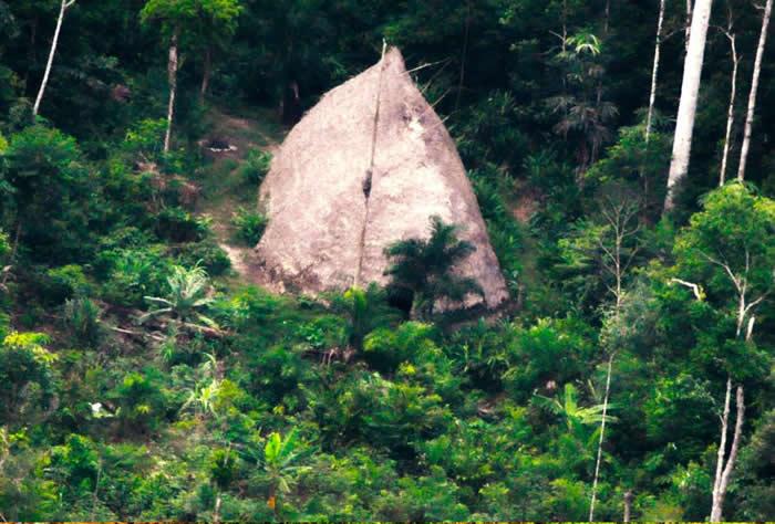 弗利切瑞人(the Flecheiros)的公共居所(maloca),2017年在FUNAI的查瓦利河谷原住民保留地(Vale do Javari Indige