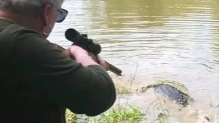 美国德克萨斯州曾祖母因长期怨恨一枪打死3.6米长巨型鳄鱼