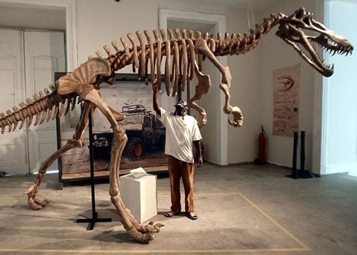 恐龙化石或已遭破坏。