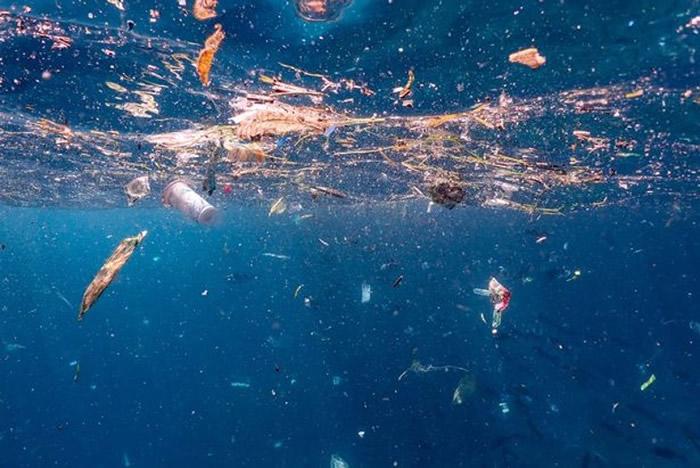 曼塔湾充斥各种废物。