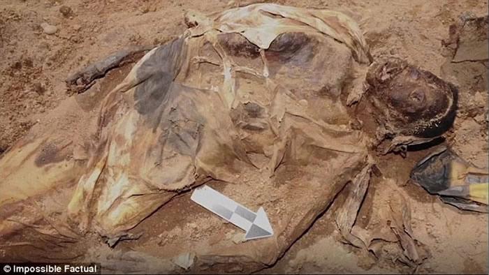 美国纽约皇后区工地挖出19世纪铁棺女尸 死因是天花