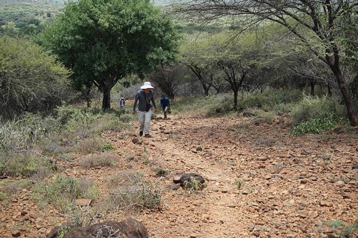 中肯联合考古为智人走出非洲增加重要证据