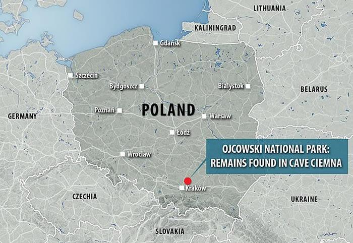 波兰洞穴中发现11.5万年前遭猛禽袭击吃掉的尼安德特人孩子的遗骸